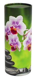 Orchid_opt