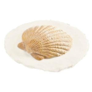 Shell-Token