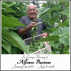Alfonso Bastone
