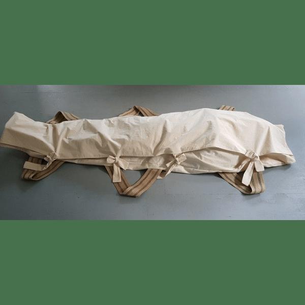 EvergreenCC_Mourning-Cloak